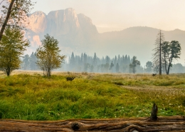 Yosemite Valley View in Morning