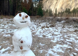 Yosemite Luxury Winter Tour Snowman