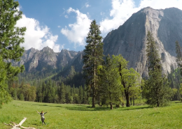 Yosemite Valley Luxury Couples Tour