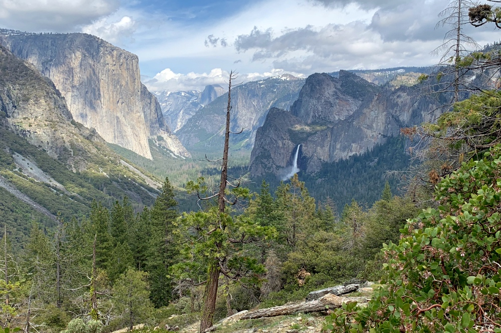 Luxury Private Yosemite Hike