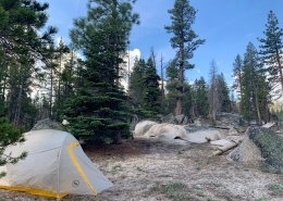 Private Yosemite Hiking Tour