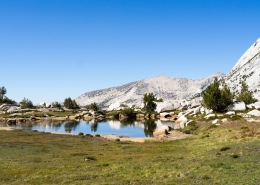 Yosemite Wilderness Tour Landscape
