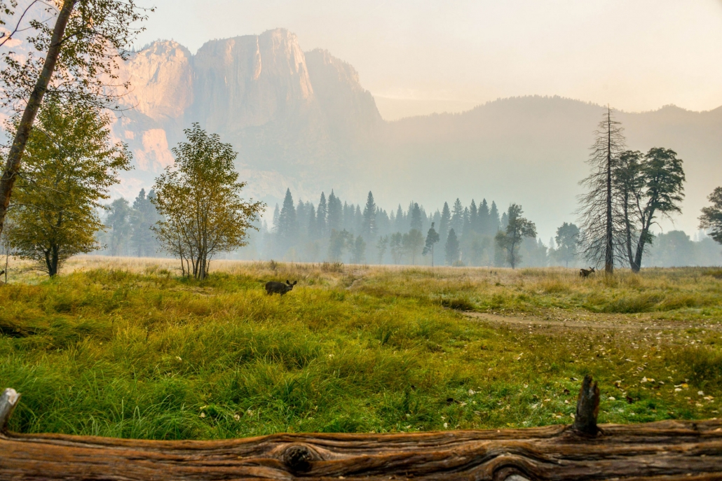 Hike in Yosemite without crowds
