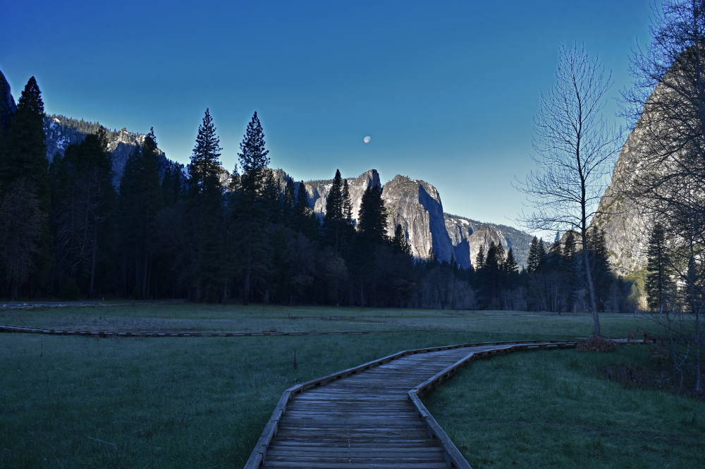 Private Yosemite Tour with Expert Guide